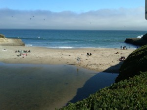 Beach view from Sunny Cove in Santa Cruz, CA