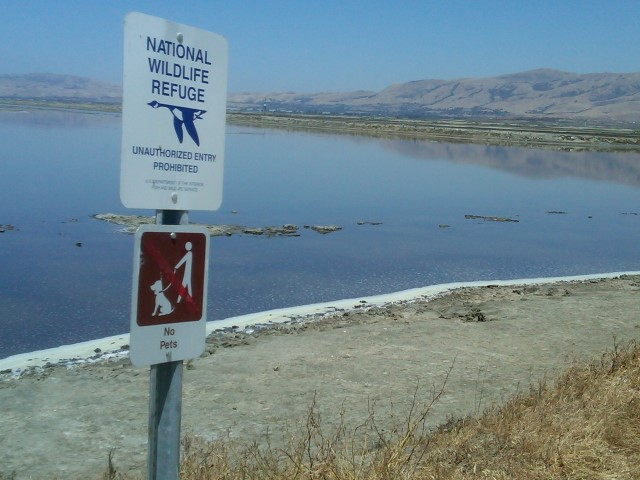 Alviso National Wildlife Refuge Small - Slideshow of Silicon Valley neighborhoods