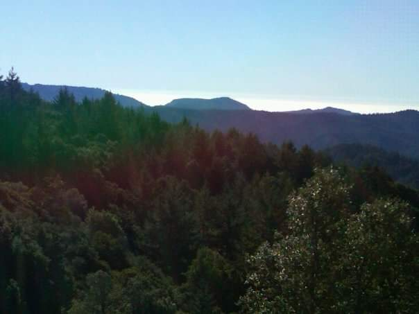 What about living in the Los Gatos Mountains (or Santa Cruz